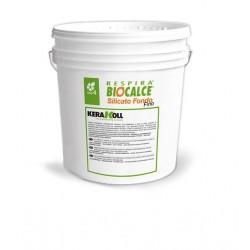 Biocalce Silicato Fondo 14L - Kerakoll